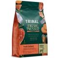 Tribal Adult Salmon 2.5kg